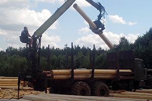 Заготовка и переработка леса